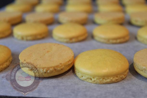 Des macarons avec une meringue française (le pas à pas en images)