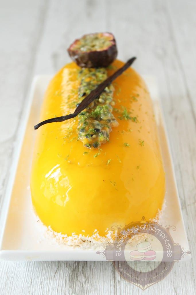 entremets-vanille-mangue-passion-banane3