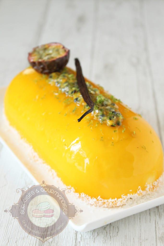 entremets-vanille-mangue-passion-banane6