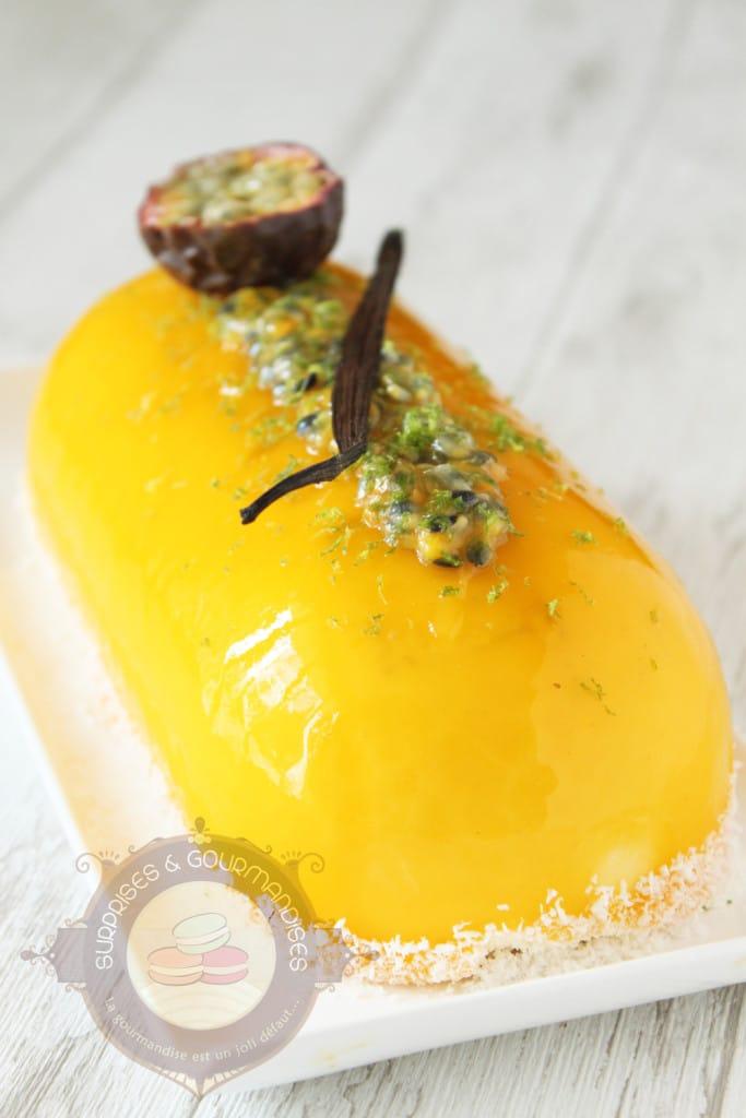 entremets-vanille-mangue-passion-banane7