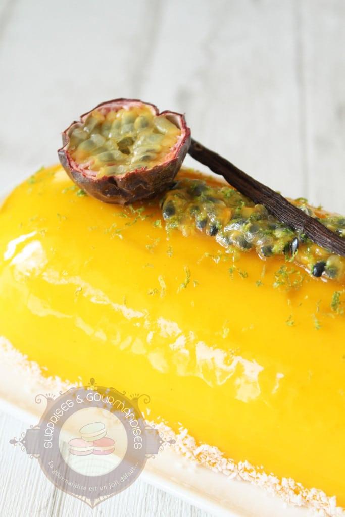 entremets-vanille-mangue-passion-banane8