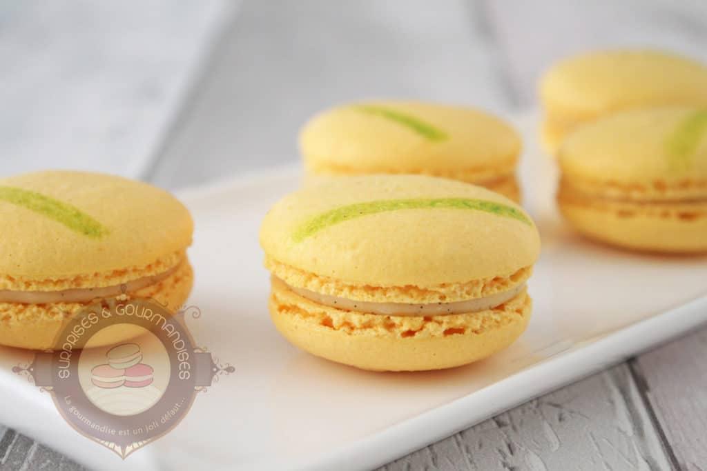 macaron-kalamansi-vanille-citron-vert01