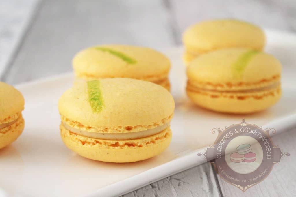 macaron-kalamansi-vanille-citron-vert02